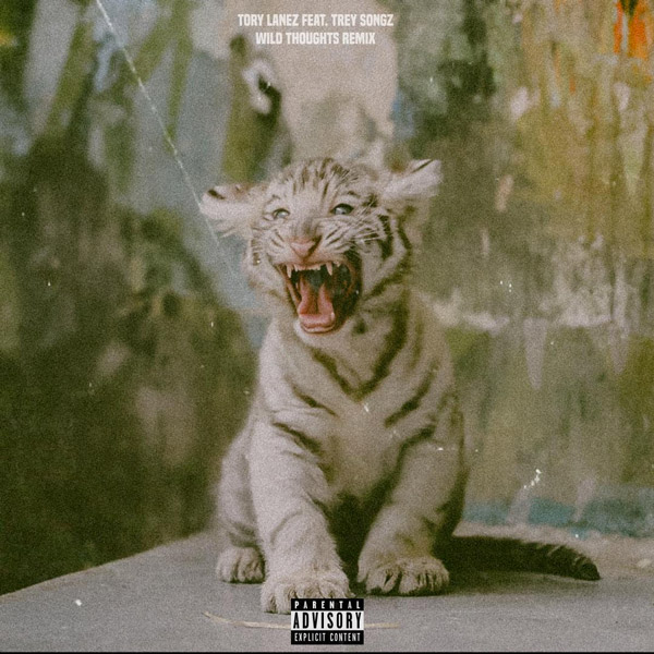 wild-thoughts-remix